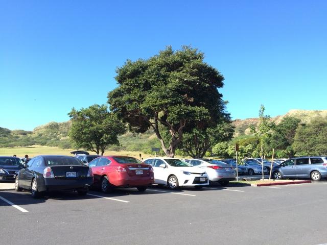 TDSTDL駐車場比較