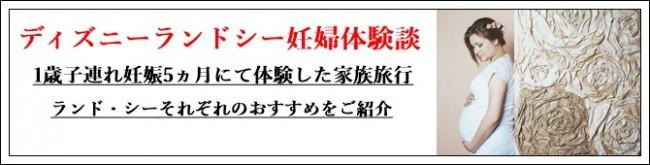 ディズニーランドシー妊婦体験談