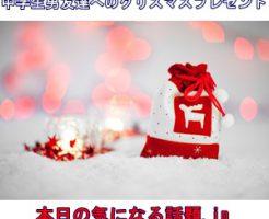 中学生男友達へのクリスマスプレゼント