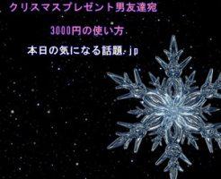 男友達へクリスマスプレゼント3000円の使い方