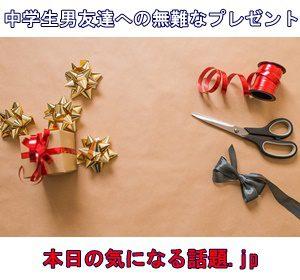 クリスマスプレゼント中学生男友達へ