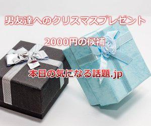 男友達へのクリスマスプレゼント2000円