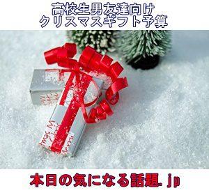 高校生男友達用クリスマスプレゼント