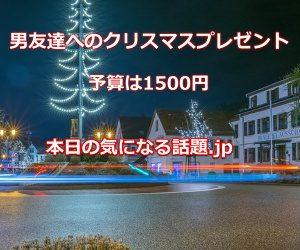 男友達へのクリスマスプレゼント1500円