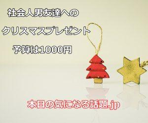 社会人男友達クリスマスプレゼント1000円